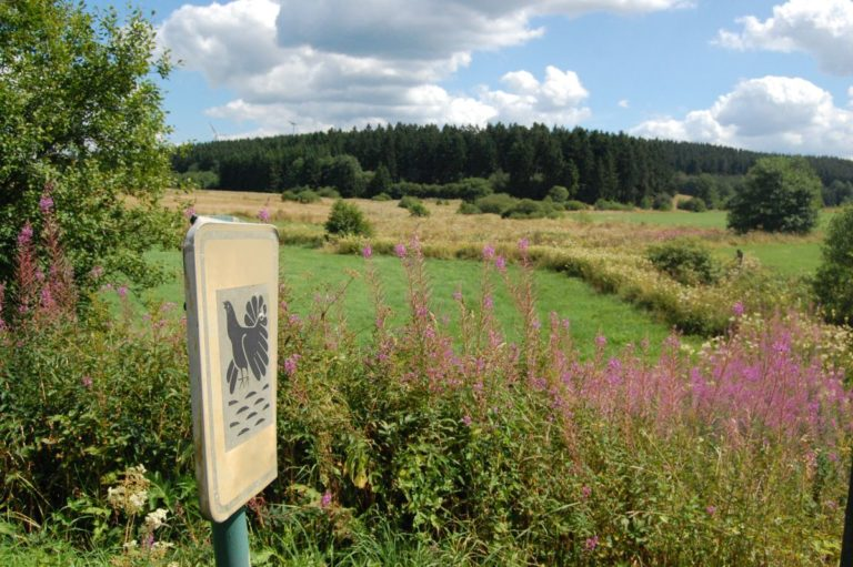 SUMMER - Black grouse as high fens Nature Reserve symbol at LEVEL600 B&B